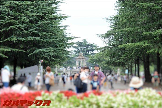 ポケモンGOの聖地、鶴舞公園のメインストリート