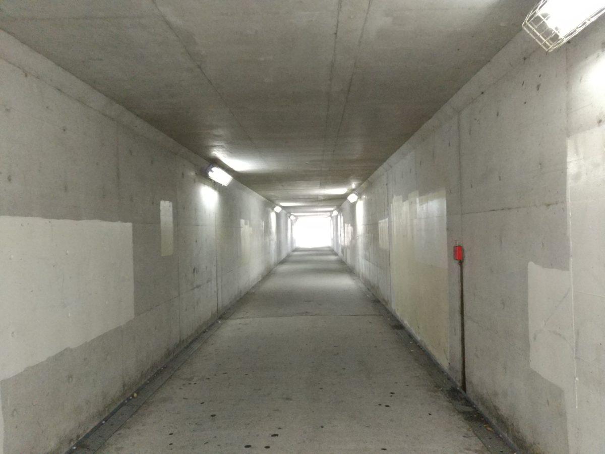 LeTV Leeco Le Max 2では薄暗い場所でもきれいに取れました
