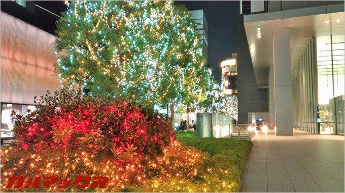 夜景モードで撮影(ZenFone3で撮影)