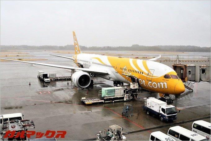LCCのスクートは全機ボーイングの787という最新の大型旅客機です。