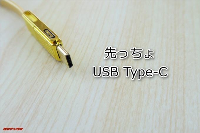 REMAXの3in1 GPLEX ケーブルの先っちょはUSB Type Cとなっています
