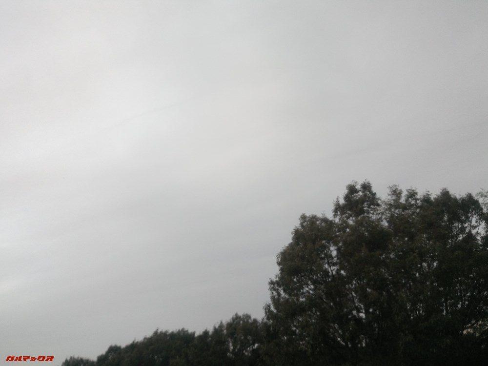 Teclast T20のリアカメラで撮影しました。