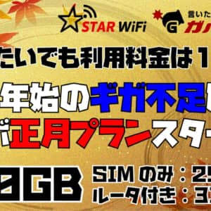 【100GB】STAR WiFiさんに正月プラン作ってもらった!12月利用開始でも請求1ヶ月分のみ!【2,990円〜】