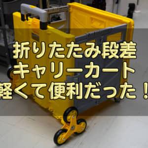 「折りたたみ段差キャリーカート」レビュー!安定性、走破性、軽量さが魅力!どこでも連れ回せそう