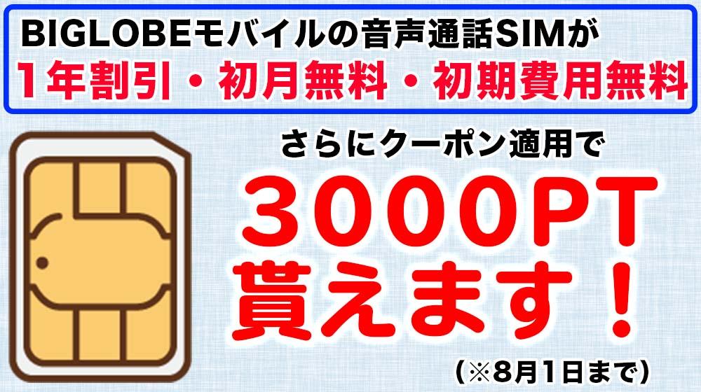BIGLOBEモバイル 8月1日まで キャンペーン