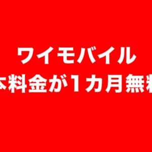 [8/31まで]今がお得!ワイモバイルが基本料1カ月無料キャンペーン開始ッ!